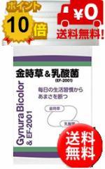 ワカサプリ 金時草&乳酸菌 90粒 約1カ月分【粗品付】【送料無料】