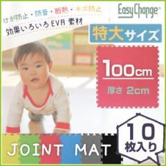 ジョイントマット 大判サイズ 100cm 10枚セット EasyChange