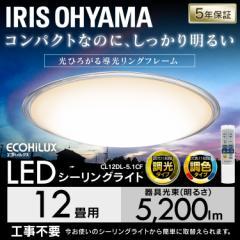【ポイントセール】シーリングライト 12畳 調光 調色 LED メタルサーキット クリア 天井照明 電気 照明 CL12DL-5.1CF アイリスオーヤマ