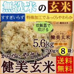 【送料無料】無洗米からだにやさしい健美玄米 5.6kg(700g×8袋) 29年産【一等米岩手ひとめぼれ使用】【北海道沖縄へは別途送料830円】