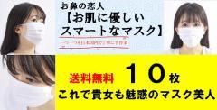 送料無料 海上自衛隊横須賀造修補給所御調達 お肌に優しいスマートなマスク 日本製 医療用 敏感肌 10枚入り レギュラー 使い捨て