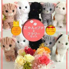 送料無料【一部地域除く】母の日 花とセット ギフト アレンジメント 誕生日 ねこ 猫 ぬいぐるみ  義母 プリザーブドフラワー ペット にゃ