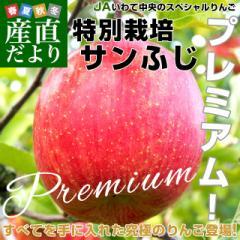 送料無料 岩手県より産地直送 JAいわて中央 プレミアム特栽サンふじ 特秀品 糖度15度以上 5キロ(14玉から18玉) 林檎 リンゴ 特別栽培 減