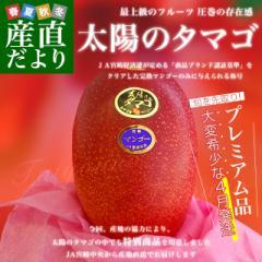 宮崎県より産地直送 JA宮崎中央 完熟マンゴー 太陽のタマゴ 2L×2玉 希少な4月発送品 (350gから459g×2玉) 送料無料