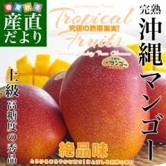 沖縄県より産地直送 JAおきなわ 完熟沖縄マンゴー 秀品 1.5キロ (4玉から5玉入り) 送料無料 まんごー アップルマンゴー 産直だより