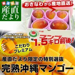 沖縄県より産地直送 JAおきなわ 完熟沖縄マンゴー 約1.5キロ (3玉から6玉入) 送料無料 まんごー アップルマンゴー 産直だより