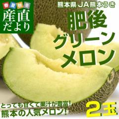 送料無料 熊本県産 JA熊本うき 肥後グリーンメロン 優以上 4キロ前後(約2キロ×2玉) 市場スポット 産直だより