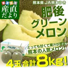 送料無料 JA熊本うき 肥後グリーンメロン 優以上 超盛り 8キロ原体箱(約2キロ×4玉) 市場スポット 産直だより