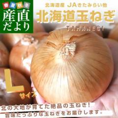 北海道産 JAきたみらい他 北海道玉ねぎ 特大2Lサイズ 10キロ(30玉前後) 送料無料 タマネギ たまねぎ 産直だより