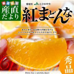 送料無料 愛媛県より産地直送 JAえひめ中央 紅まどんな 秀品 3LからLサイズ 3キロ(10玉から15玉) 紅マドンナ オレンジ 柑橘 冬ギフト 御
