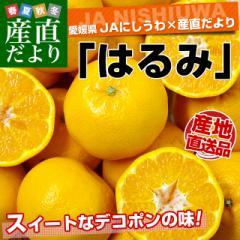 愛媛県より産地直送 JAにしうわ はるみ 3LからMサイズ 5キロ (18玉から35玉) 送料無料 柑橘 オレンジ ハルミ  西宇和 八幡浜 産直だより