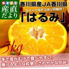 香川県より産地直送 JA香川県 はるみ Mから3L ちょっと訳あり 5キロ(12から28玉前後) 柑橘 オレンジ ハルミ 産直だより