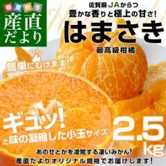 佐賀県より産地直送 JAからつ はまさき 小玉 SSサイズ 2.5キロ (20から25玉前後) 送料無料 唐津 浜崎  産直だより