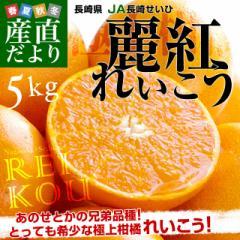 長崎県より産地直送 JA長崎せいひ 麗紅 (れいこう) 3LからLサイズ 優品以上 5キロ (20玉から30玉) 送料無料 柑橘