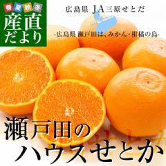 広島県産 JA三原せとだ「瀬戸田のハウスせとか」 3キロ 優以上 Lから3Lサイズ(10玉から15玉)柑橘 かんきつ オレンジ  市場スポット  送