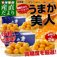 送料無料 佐賀県より産地直送 JAからつ うまか美人 高糖度みかん 小粒 3Sから2Sサイズ 約2キロ×2箱(合計80玉前後)  U・M・K美