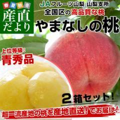 送料無料 岡山県産 桃 もも 岡山の白桃 青秀 モモ はくとう 5〜9玉 父の日ギフト 白桃 約1.3kg