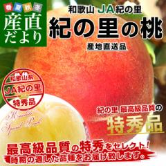 和歌山県より産地直送 JA紀の里 紀の里の桃 特秀品 1.8キロ (6玉から8玉) 送料無料 桃 もも 産直だより