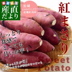 茨城県より産地直送 JAなめがた さつまいも「紅まさり(べにまさり)」 SからSSサイズ 約1キロ×3箱セット 送料無料 さつま芋 サツマイモ
