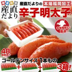 送料無料 福岡加工「辛子明太子」ゴールデンサイズ 1本もの 280g (6から7本)×3箱 産直だより