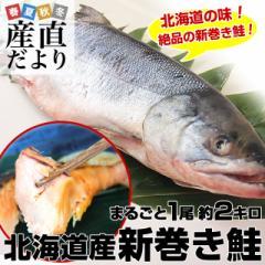 北海道から産地直送 北海道産 新巻き鮭(甘塩) まるごと1尾 2キロ 送料無料 さけ サケ 産直だより