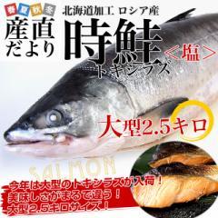 北海道加工  時鮭 (トキシラズ) まるごと1尾 大型2.5キロ 産直だより 北海道直送 塩鮭 ロシア産 1本物 新物 ときさけ トキサケ 送料無料