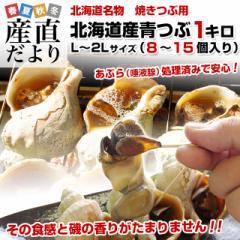 北海道産 焼きつぶ用 青つぶ  (あぶら処理済み・ボイル) Lから2Lサイズ 約1キロ (8個から15個入り) 産直だより 北海道直送 ツブ 貝付き