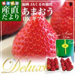 福岡県より産地直送 JAくるめ あまおういちご DX:ギフト用デラックス 約540g(270g×2パック) 送料無料 苺 いちご イチゴストロベリー 産