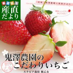 茨城県産 鬼澤農園のこだわりいちご (ステビア栽培 栃乙女) 合計1.2キロ以上 (300g×4パック入り) 市場発送 苺 イチゴ 大田市場 産直だよ