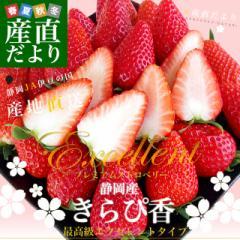 静岡県より産地直送 JA伊豆の国 プレミアムいちご きらぴ香 大粒タイプ 約900g(9粒から15粒入り×2P) 送料無料 苺 いちご イチゴ ※クー