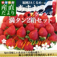 福岡県より産地直送 JAくるめ あまおう Gグランデ 2箱セット 合計1080g (270g×4パック:合計24から48粒) 送料無料 苺 いちご