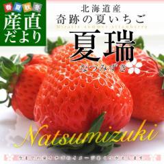 北海道より産地直送 高級いちご 夏瑞(なつみずき)約180g(6粒から7粒)×2パック 化粧箱入り イチゴ 苺 夏イチゴ 産直だより