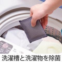 洗濯槽クリーナー ヨウ素DE洗濯槽キレイ ( 洗濯槽 抗菌 除菌 消臭 防臭 防カビ 部屋干し 室内干し 臭い 皮脂吸着 洗濯用品 洗濯物 洗濯