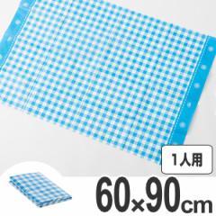 レジャーシート ギンガムチェック S 1人用 ( ピクニック 遠足 シート ピクニックシート 運動会 小さめ コンパクト )