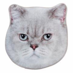 ハンドタオル リアルモチーフタオル フテ猫 ハンカチ 猫 ネコ ( タオル グレー猫 フェイス リアル モチーフタオル ハンカチタオル 本物