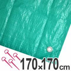 レジャーシート ジャンボシート 行楽シート 2畳 1.7×1.7m グリーン ( レジャーマット ピクニックシート ストッパー付き ピクニッ