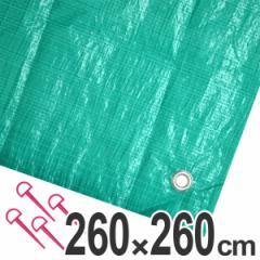 レジャーシート ジャンボシート 行楽シート 4.5畳 2.6×2.6m グリーン ( レジャーマット ピクニックシート ストッパー付き ピクニ