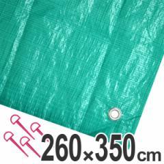レジャーシート ジャンボシート 行楽シート 6畳 2.6×3.5m グリーン ( レジャーマット ピクニックシート ストッパー付き ピクニッ