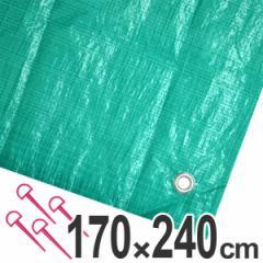 レジャーシート ジャンボシート 行楽シート 3畳 1.7×2.4m グリーン ( レジャーマット ピクニックシート ストッパー付き ピクニッ
