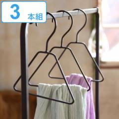 ハンガー 3本組 ジョセフアイアン ミニハンガー ネクタイハンガー ネクタイ 小物 ( 衣類ハンガー セット 衣類収納 衣類 収納 ディスプレ