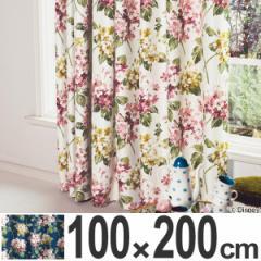カーテン 遮光カーテン スミノエ アリス アジサイ 100×200cm ( 送料無料 遮光 ディズニー ドレープカーテン Disney ふしぎの国の