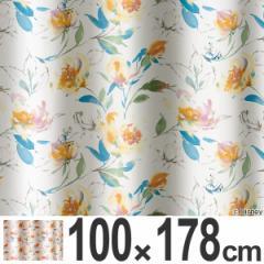 カーテン 遮光カーテン スミノエ アリス ローズガーデン 100×178cm ( 送料無料 遮光 ディズニー ドレープカーテン Disney ふしぎ