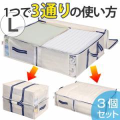 収納袋 L 幅100×奥行70×高さ18cm 空間の匠 衣類 衣類収納袋 透明窓付き 3個セット ( 送料無料 布団収納 収納 衣類収納 クロー