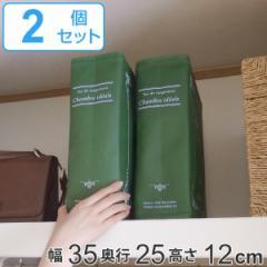 収納袋 ストレージブックス 幅35×奥行25×高さ12cm 2冊セット ( 衣類 小物 棚上 収納 マルチ収納 クローゼット収納 本型 ブック型 小物