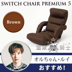 スイッチチェア プレミアム5(肘掛け付き)【ブラウン・オルちゃん・ルイ】