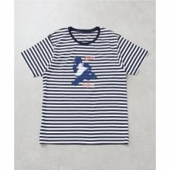 【NEW】エディフィス(EDIFICE)/メンズTシャツ(CARP×EDIFICE スライリーボーダーTシャツ)