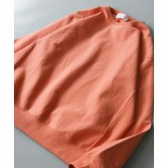 アーバンリサーチ ドアーズ(メンズ)(URBAN RESEARCH DOORS)/メンズTシャツ(度詰め天竺カラースウェット)