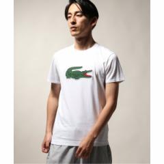 【NEW】ジャーナルスタンダード レリューム(メンズ)(JOURNAL STANDARD relume)/メンズTシャツ(LACOSTE / ラコステ  JERSEY LOGO S…