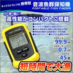 魚群探知機 音波式 フィッシュファインダー ワカサギ釣り/イワシ釣り/バス釣り/ルアーにお勧め!