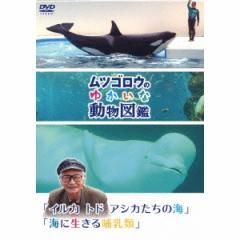 ムツゴロウのゆかいな動物図鑑 「イルカ トド アシカたちの海」/「海に生きる哺乳類」 【DVD】